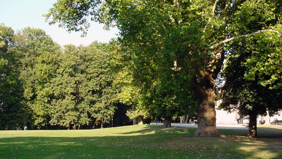 Parc du Câteau de Verberie